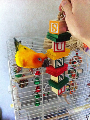 Bird toy made with blocks image
