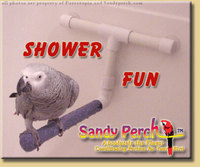 Parrotopia Sandy Perch Shower Fun Perch