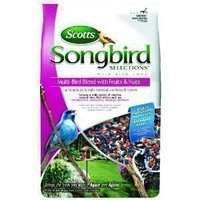 Scotts Songbird