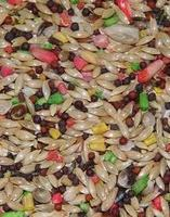 Vita-Canary Sun Seed Bird Food 25lb bag