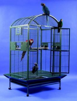 36 x 28 Powder Coated Dome Top AE Cage