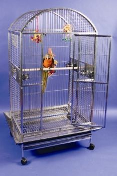 A&E Cage Large Dome Top 40 x 30 Stainless Steel
