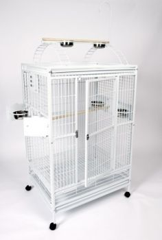 48 x 36 Macaw Powder Coated Play Top AE Cage