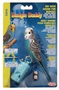 Budgie Buddy-Living World