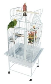 24 x 22 Opening Top Victorian A&E Cage