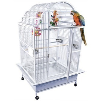 40 x 32 Opening Top Victorian AE Cage