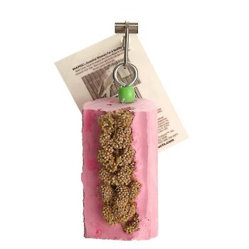 Millet Mini Log Cactus Snack-Polly's